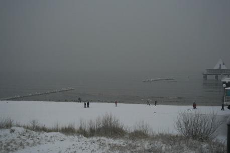 Schnee 2008
