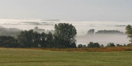 gothensee-im-nebel.jpg
