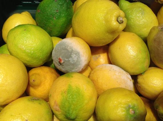Faule Zitrone